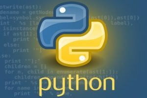 the actual symbol of the Python programming language in front of lines of code