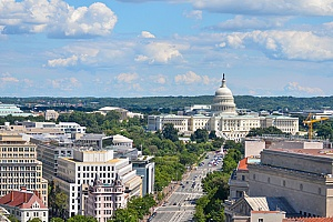 businesses in Washington, DC that need SEO